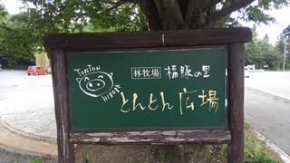 とんとん広場.jpg